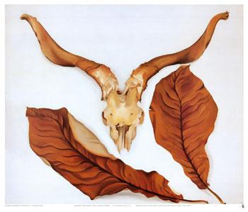 ジョージア・オキーフ 「子羊の頭蓋骨とブラウンの葉 」
